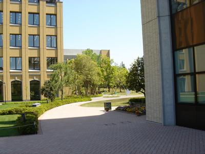 青山学院大学 相模原キャンパス B棟メディアセンター&C棟ウェスレーチャペル